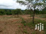 Sagana Plote | Land & Plots For Sale for sale in Kiambu, Hospital (Thika)