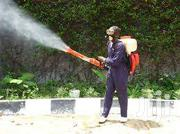 Pest Control & Services(Anywhere In Mombasa) | Cleaning Services for sale in Mombasa, Majengo