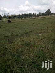 50x100 Plots at Lake Naivasha | Land & Plots For Sale for sale in Nakuru, Biashara (Naivasha)