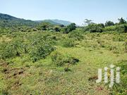 1⁄8th Of An Acre Plots On Sale In Ngong | Land & Plots For Sale for sale in Kajiado, Ngong