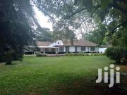 Beautiful House With a Big Garden for Rent in Kilimani | Houses & Apartments For Rent for sale in Nairobi, Kilimani