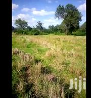 Land For Lease @ Njafi , Past Subukia Upto 200 Acres Available | Land & Plots for Rent for sale in Nakuru, Subukia