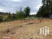 Subukia 2 Acres | Land & Plots For Sale for sale in Nakuru, Waseges