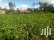 40x80ft Residential Plots For Sale At Kenol In Murang'a County. | Land & Plots For Sale for sale in Murang'a, Kimorori/Wempa
