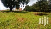 1/4 Acre Plot For Sale At Kangemi Nyeri | Land & Plots For Sale for sale in Nyeri, Rware