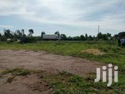 PRIME PLOT FOR SALE   Land & Plots For Sale for sale in Migori, East Kamagambo