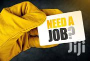 Logistics, Purchase And Supply | Management Jobs for sale in Nairobi, Nairobi Central