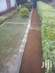 Designing And Decorating | Landscaping & Gardening Services for sale in Nairobi, Kileleshwa