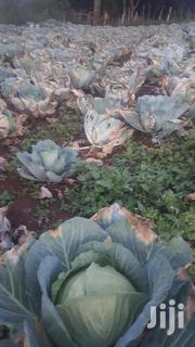 Gloria Cabbages | Meals & Drinks for sale in Nandi, Kabiyet