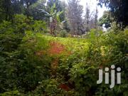 1/4 Acre For Sale | Land & Plots For Sale for sale in Murang'a, Kambiti