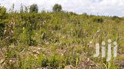 6acre Land On Sale At Sugar Industry,Dhiwa.170per Acre. | Land & Plots For Sale for sale in Migori, Kachien'G A