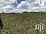 3000 Acres Farm In Subukia Nakuru County For Sale | Land & Plots For Sale for sale in Nakuru, Subukia