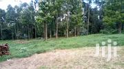 3 Acre Land For Sale In Limuru Murengeti | Land & Plots For Sale for sale in Kiambu, Limuru East