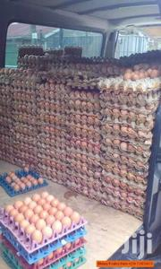 Layers Eggs | Livestock & Poultry for sale in Mombasa, Port Reitz