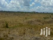 Selling 1000 Acres In Laikipia | Land & Plots For Sale for sale in Laikipia, Ngobit