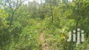 3 Acres For Sale At Mithini,Makuyu | Land & Plots For Sale for sale in Murang'a, Makuyu