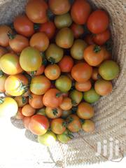 Organic Tomatoes And Green Peppers | Meals & Drinks for sale in Nairobi, Karen