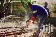 Bestcare Tree Felling, Tree Pruning, & Stump Removal Experts.Call Now | Landscaping & Gardening Services for sale in Nairobi, Westlands