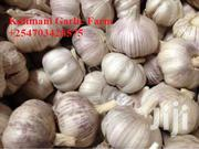 Local Organic Garlic | Meals & Drinks for sale in Machakos, Athi River