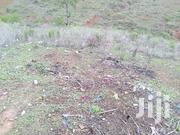 Prime 50 X 100 Sqft Plots At Ksh 330K On Sale At Miritini Area Mombas | Land & Plots For Sale for sale in Mombasa, Miritini