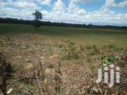 16 Acres On Sale Muhotetu | Land & Plots For Sale for sale in Laikipia, Marmanet
