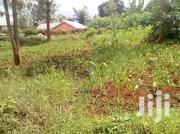 Very Nice 40 By 80 Plot For Sale In Kabati Town | Land & Plots For Sale for sale in Murang'a, Kagundu-Ini