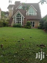 St Peterburg Proffetional Land Scaping | Landscaping & Gardening Services for sale in Nairobi, Lavington