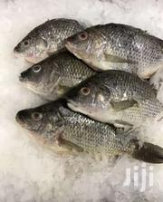 Tilapia Fish , Omena , Nile Perch | Other Animals for sale in Nairobi, Mihango