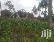 3 Acres of Land | Land & Plots For Sale for sale in Nyeri, Mweiga