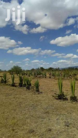 100 Acres For Sale In Juja Farm Mastores 6km From Tarmac.