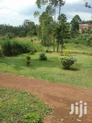 Quarter An Acre Plot In Kadika. | Land & Plots For Sale for sale in Migori, Suna Central