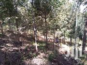 6 Acres In Bellevue Trading Centre In Mweiga - Nyeri County. | Land & Plots For Sale for sale in Nyeri, Gatarakwa
