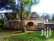 Well Maintained 4 BR Old House On Its Own Compound In Karen   Houses & Apartments For Rent for sale in Nairobi, Karen