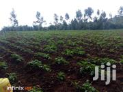 Are You Looking For Shamba To LEASE ? | Land & Plots For Sale for sale in Nyandarua, NjabiniKiburu