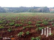 1 Acre Nyandarua | Land & Plots For Sale for sale in Nyandarua, Mirangine