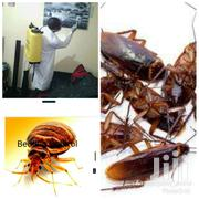 Pest Control And Fumigation Services | Cleaning Services for sale in Nairobi, Karura