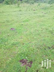 PRIME LAND ON SALE | Land & Plots For Sale for sale in Nandi, Kilibwoni