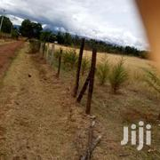 3 Acres For Sale In Nyeri | Land & Plots For Sale for sale in Nyeri, Konyu