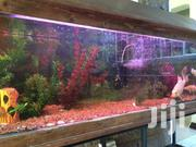 250 Litre Rectangular Custom Aquarium | Pet's Accessories for sale in Nairobi, Nairobi South