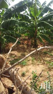70 Acres River Frontage Located In Kibwezi   Land & Plots For Sale for sale in Makueni, Nguu/Masumba