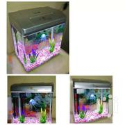 Imported Curved Glass Aquarium(New) | Fish for sale in Nairobi, Pangani