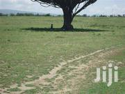Nice 340 Acres On Sale 2km From Narok Masai Mara Road,Selling At 290k | Land & Plots For Sale for sale in Nakuru, London