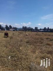10 Acres Land For Sale In Gilgil | Land & Plots For Sale for sale in Nakuru, London