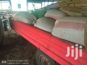 Bormarodes Seeds | Feeds, Supplements & Seeds for sale in Nakuru, Lanet/Umoja