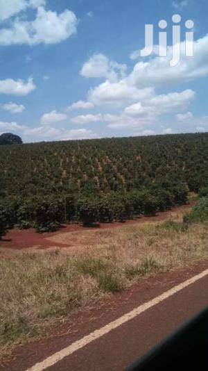302 Acres For Sale In Kiganjo Rd Off Thika Rd