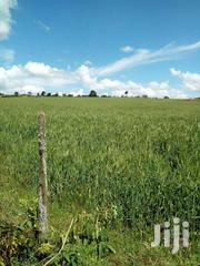 Very Prime Agricultural Land | Land & Plots For Sale for sale in Laikipia, Igwamiti