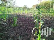1.8acres For Dairy Farming Horticulture Farm | Land & Plots For Sale for sale in Kiambu, Hospital (Thika)