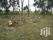 Shamba In Kinangop | Land & Plots For Sale for sale in Nyandarua, Weru