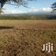 Land  20  Acres On Sale | Land & Plots For Sale for sale in Laikipia, Ngobit