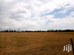 Narumoru Nyeri 70 Acres Prime Farm Land On Sale For Kshs 1.3M Per Acre